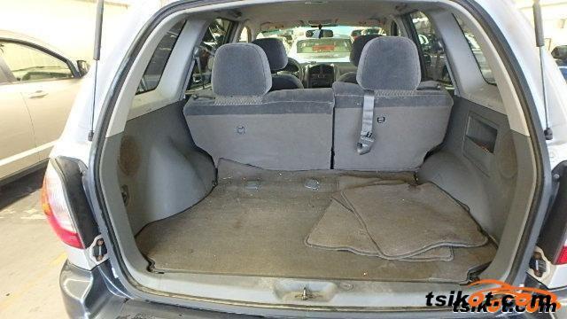 Hyundai Santa Fe 2004 - 5