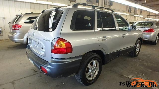 Hyundai Santa Fe 2004 - 6