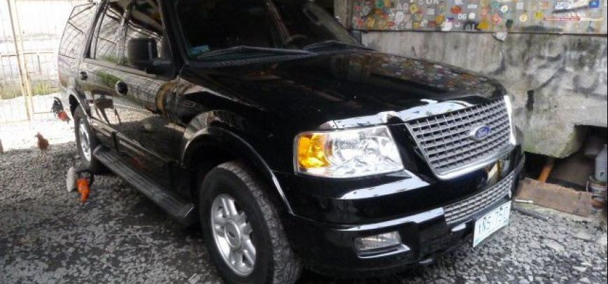 Ford Expedition 2004 - 8