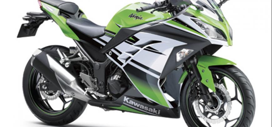 Kawasaki Bayou 250 2015 - 1
