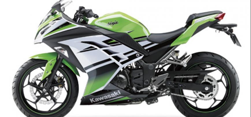 Kawasaki Bayou 250 2015 - 2