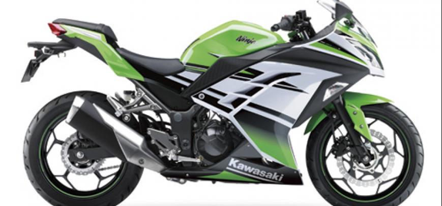 Kawasaki Bayou 250 2015 - 6