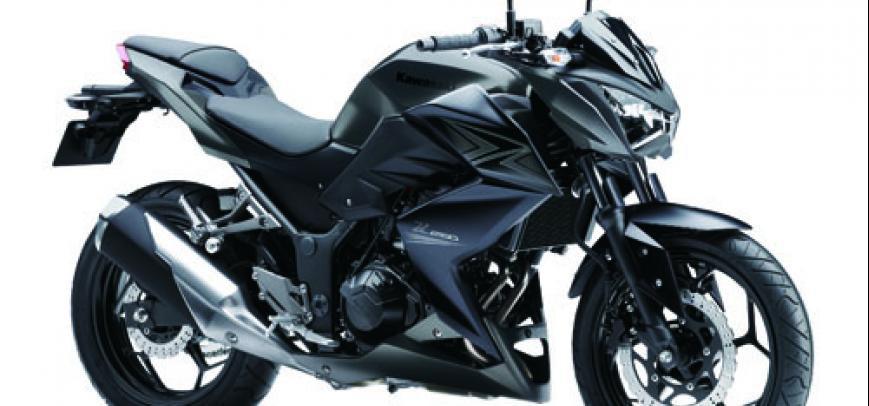 Kawasaki 250Tr 2015 - 1