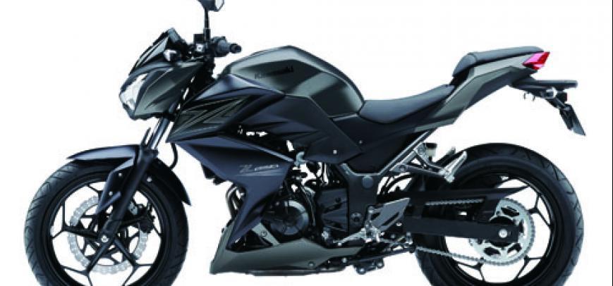 Kawasaki 250Tr 2015 - 2