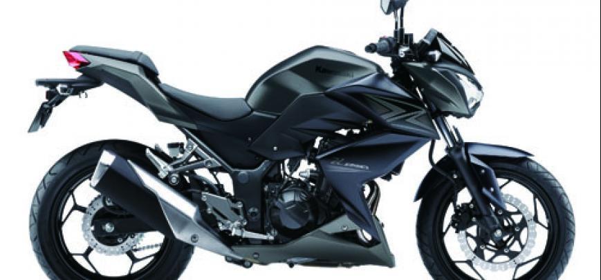 Kawasaki 250Tr 2015 - 3