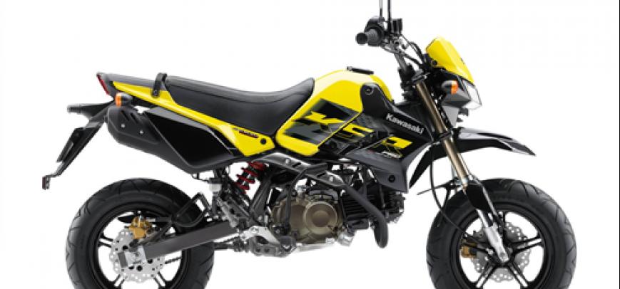 Kawasaki 125 Ks 2015 - 2