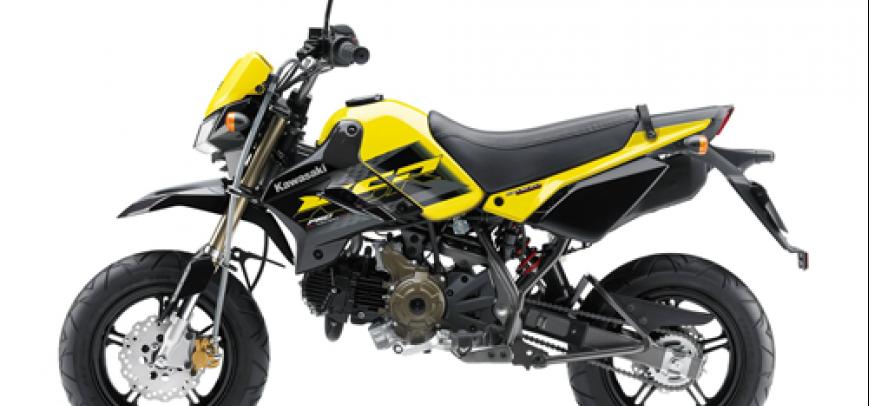 Kawasaki 125 Ks 2015 - 6