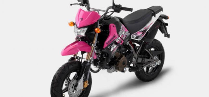 Kawasaki Klx 110 2015 - 8