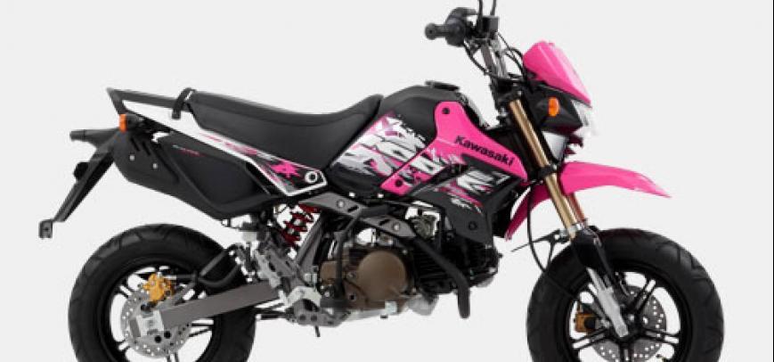 Kawasaki Klx 110 2015 - 9