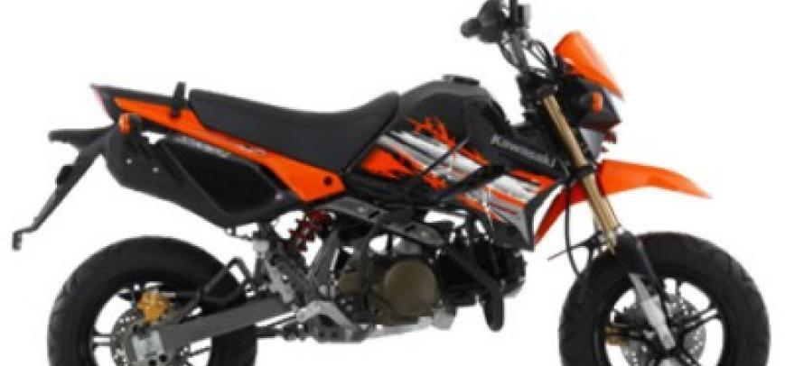 Kawasaki Klx 110 Monster Energy 2015 - 1
