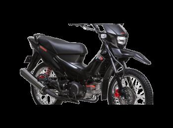 motorbikes_2135__1