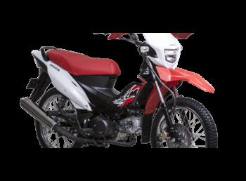 motorbikes_2136__1